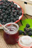 Freshly Harvested Forest Blackberries