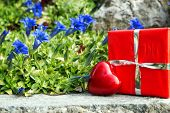 Greeting Card With Bavarian Gentian And A Heart And Gift