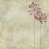 Earthy floral background image