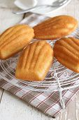 pic of petition  - Madeleines or petite madeleine a traditional cake from the Lorraine region of France - JPG