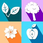 Four colorful icons with nature elements