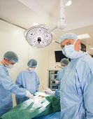 Medical student looking at camera during practice surgery at the university