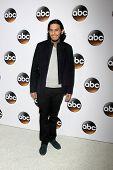 LOS ANGELES - JAN 14:  Richard Cabral at the ABC TCA Winter 2015 at a The Langham Huntington Hotel on January 14, 2015 in Pasadena, CA