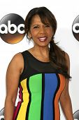 LOS ANGELES - JAN 14:  Penny Johnson Jerald at the ABC TCA Winter 2015 at a The Langham Huntington Hotel on January 14, 2015 in Pasadena, CA