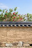 picture of red roof tile  - korean traditional tiled roof wall with red rose in sunny day - JPG