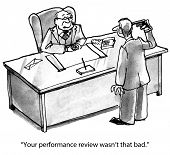 Over-Reaction to Performance Review