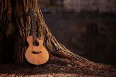 foto of guitar  - Wooden Acoustic Guitar and the Tree Music Concept Photo - JPG