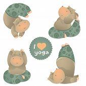 picture of behemoth  - Cute animal illustration of yoga pose - JPG