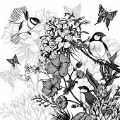 pic of hydrangea  - Vintage Monochrome Floral Greeting Card with Birds and Butterflies - JPG