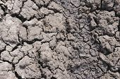 picture of drought  - Dry ground - JPG
