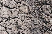 stock photo of drought  - Dry ground - JPG