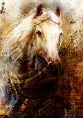 image of horse head  - Horse heads abstract ocre background with one dollar collage - JPG