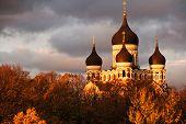 Nevsky Cathedral, Tallinn