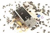 Bankroll, phone and sunflower