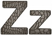 Alligator Skin Font Z Lowercase And Capital Letters