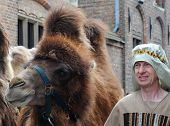 Bruges, Procession of the Holy Blood, man with camel