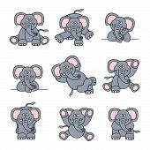 Cute Elephant Set