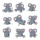 Cute Elephant Set