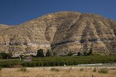 stock photo of yakima  - Apple Farm Yakima Washington Red Farm Yellow Dry Mountain - JPG