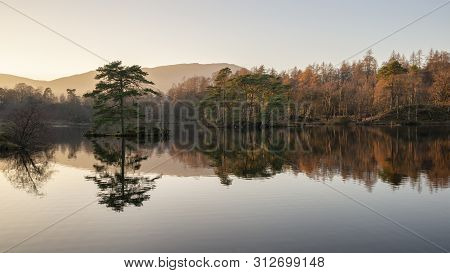 poster of Stunning Landscape Image Of Tarn Hows In Lake District During Beautiful Autumn Fall Evening Sunset W