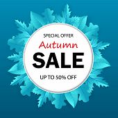 Banner Of Autumn Sale With Seasonal Fall Leaves. Autumn Sale Tag. Sale Promotional Material. Design  poster