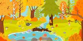 Autumn Forest. Autumnal Nature Landscape, Yellow Forests Trees And Woodland Fall Leaves. October Fol poster