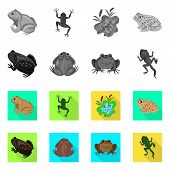 Bitmap Design Of Wildlife And Bog Icon. Set Of Wildlife And Reptile Stock Bitmap Illustration. poster