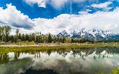 Reflection of the mountain peaks at Schwabacher landing, Grand Teton national park. Wyoming, USA  poster