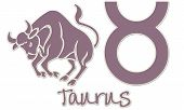 Taurus Zodiac Signs - Purple Sticker