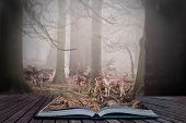 Forest Scene In Magic Book With Fallow Deer In Trees
