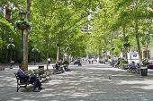 Dag Hammarskjold Plaza