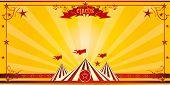 Orange circus invitation. An invitation card for your circus company.