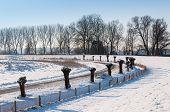 Curves In A Snowy Dutch Landscape