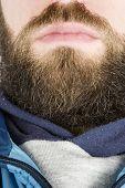Beard Close Up