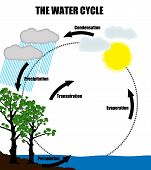 Schematic Representation Of The Water Cycle In Nature
