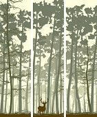 image of coniferous forest  - Vertical abstract banners of wild deer in forest with trunks of pine trees - JPG