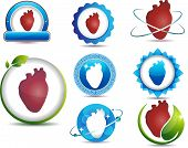 human Heart anatomy symbols