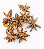 Chinese aniseed