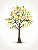 Autumn Tree - Vector Illustration