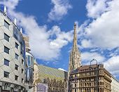 The Vienna Stephansdom