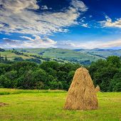 stock photo of haystacks  - a pair of haystacks and a tree on a green meadow at the foot of the mountain - JPG
