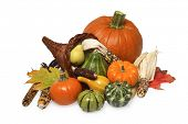 picture of cornucopia  - still life of pumpkin - JPG
