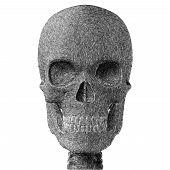Human Skull Pencil Sketch