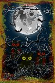 Halloween owl moon background