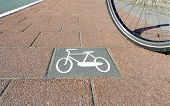 Bicycle Path No.4