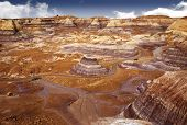 pic of petrified  - Beautiful view of Blue Mesa hiking trail through badlands landscape at Petrified Forest National Park in Arizona USA - JPG