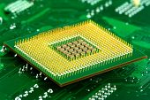 image of microprocessor  - Microprocessor on Circuit  - JPG