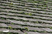 Wooden roof with old shingles and moss