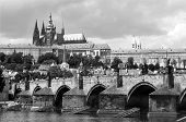 charles bridge and cathedral - prague