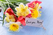 Daffodils, Tulips For Mother's Day